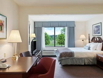 Wingate By Wyndham Flint / Grand Blanc, MI 48439 near Bishop International Airport View Point 4