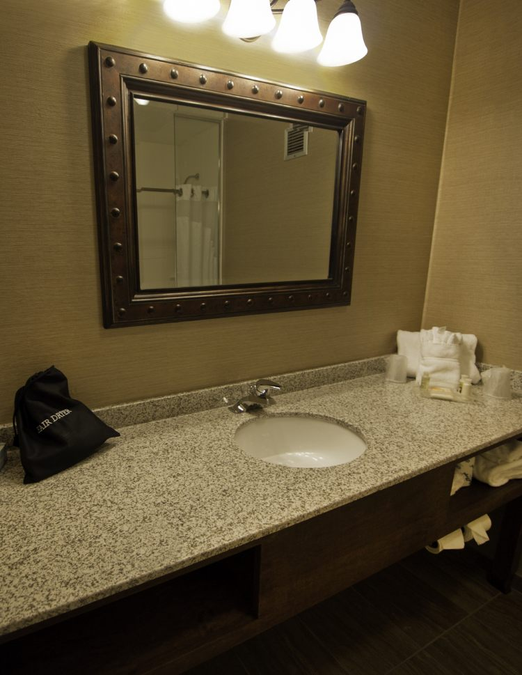 Holiday Inn Buffalo-Intl Airport, NY 14225 near Buffalo Niagara International Airport View Point 27