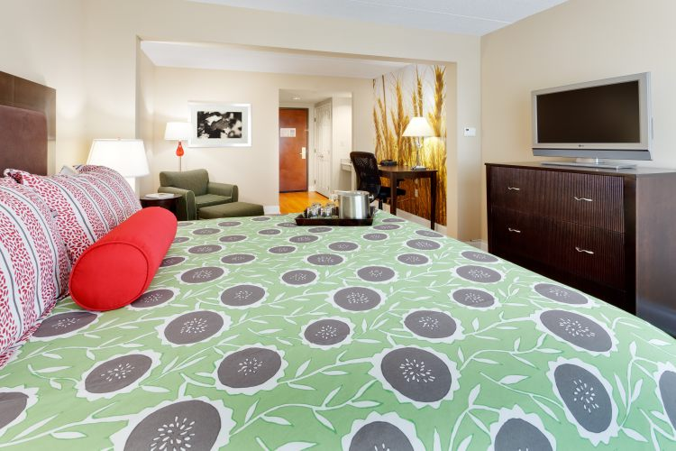 Hotel Indigo Albany Latham, NY 12110 near Albany International Airport View Point 6