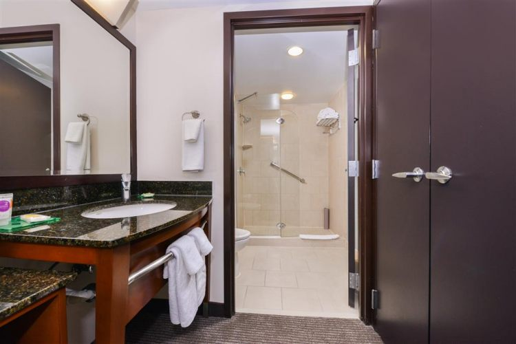 Hyatt Place Herndon/Dulles Airport East, VA 20171 near Washington Dulles International Airport View Point 7