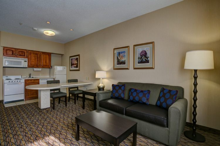 Holiday Inn Hotel & Suites Milwaukee Airport Hotel, WI 53207 near General Mitchell International Airport View Point 6