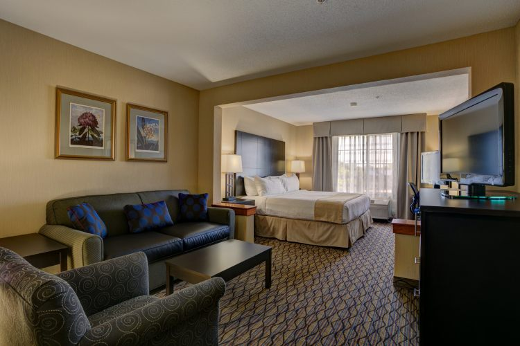 Holiday Inn Hotel & Suites Milwaukee Airport Hotel, WI 53207 near General Mitchell International Airport View Point 5