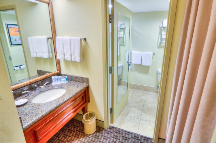 HOLIDAY INN WESTSHORE AIRPORT AREA, FL 33609 near Tampa International Airport View Point 33