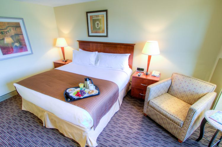 HOLIDAY INN WESTSHORE AIRPORT AREA, FL 33609 near Tampa International Airport View Point 13