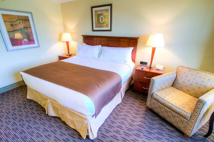 HOLIDAY INN WESTSHORE AIRPORT AREA, FL 33609 near Tampa International Airport View Point 12