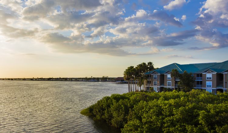 Sailport Waterfront Suites, FL 33607 near Tampa International Airport View Point 15