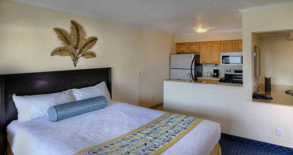 Sailport Waterfront Suites, FL 33607 near Tampa International Airport View Point 5