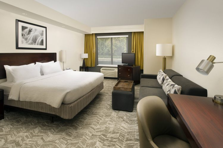 SpringHill Suites by Marriott Jacksonville Airport, FL 32218 near Jacksonville International Airport View Point 11