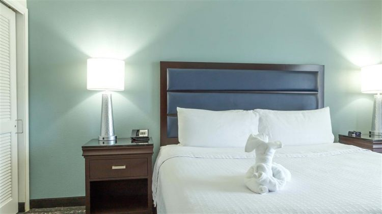 Homewood Suites by Hilton Miami - Airport West, FL 33122 near Miami International Airport View Point 2