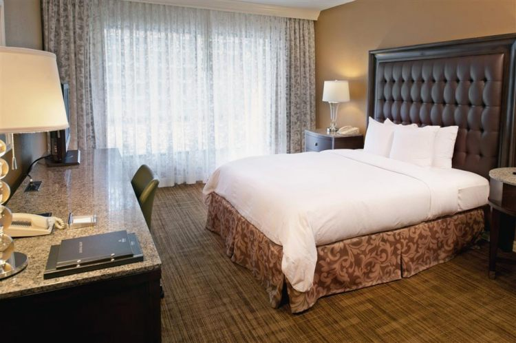 Hilton St. Louis Airport Hotel, MO 63134 near Lambert-saint Louis International Airport View Point 3