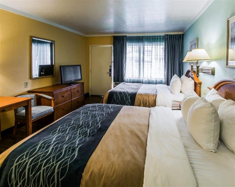Quality Inn & Suites Port Canaveral Area, FL 32931 near Orlando International Airport View Point 20