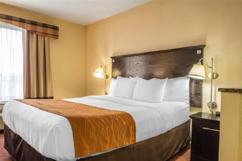 Comfort Inn & Suites LaGuardia Airport, NY 11378 near Laguardia Airport View Point 25