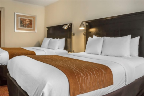 Comfort Inn & Suites LaGuardia Airport, NY 11378 near Laguardia Airport View Point 18