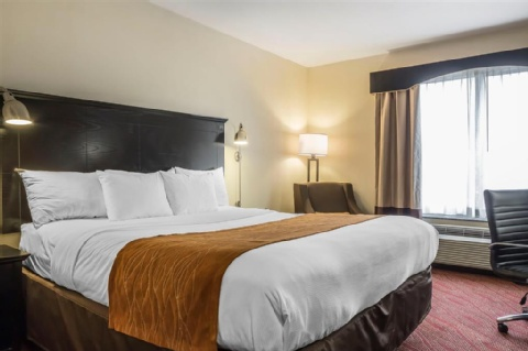 Comfort Inn & Suites LaGuardia Airport, NY 11378 near Laguardia Airport View Point 12
