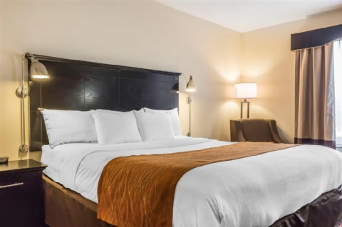 Comfort Inn & Suites LaGuardia Airport, NY 11378 near Laguardia Airport View Point 10