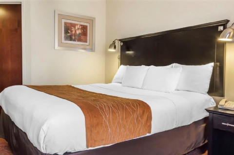 Comfort Inn & Suites LaGuardia Airport, NY 11378 near Laguardia Airport View Point 7