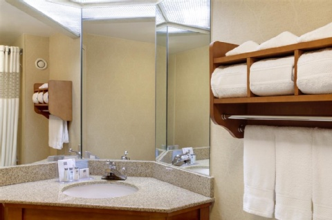 Hampton Inn Chicago-O'Hare International Airport, IL 60176 near Ohare International Airport View Point 6
