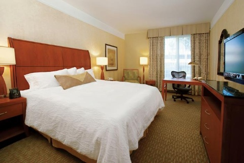 Hilton Garden Inn Toronto Airport Hotel, ON  near Toronto Pearson International Airport View Point 2