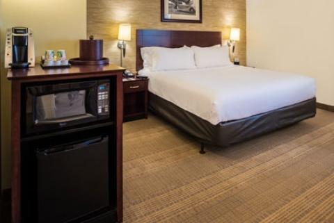 Holiday Inn and Suites Chicago O'Hare-Rosemont Hotel, IL 60018 near Ohare International Airport View Point 16