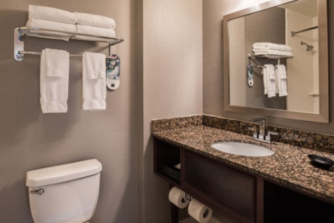 Holiday Inn and Suites Chicago O'Hare-Rosemont Hotel, IL 60018 near Ohare International Airport View Point 17