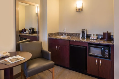 Holiday Inn and Suites Chicago O'Hare-Rosemont Hotel, IL 60018 near Ohare International Airport View Point 15