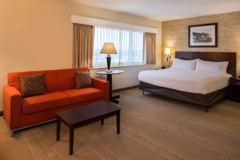 Holiday Inn and Suites Chicago O'Hare-Rosemont Hotel, IL 60018 near Ohare International Airport View Point 14