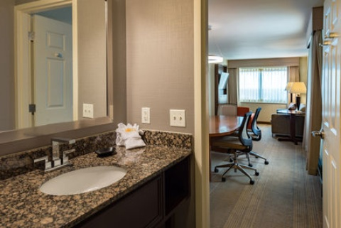 Holiday Inn and Suites Chicago O'Hare-Rosemont Hotel, IL 60018 near Ohare International Airport View Point 6