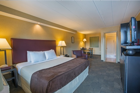 Carlton Inn Midway, IL 60632 near Midway International Airport View Point 3