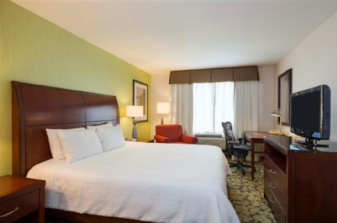 HILTON GARDEN INN QUEENS-JFK AIRPORT, NY 11430 near John F Kennedy Intl Airport View Point 5
