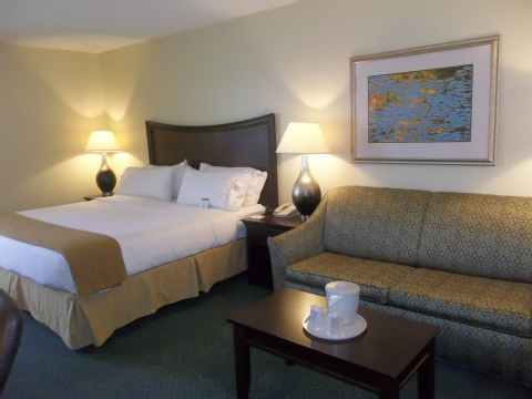 Holiday Inn Express Indianapolis Airport, IN 46168 near Indianapolis International Airport View Point 9