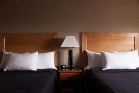 Executive Royal Hotel Calgary, AB T2E 8T4 near Calgary International Airport View Point 5