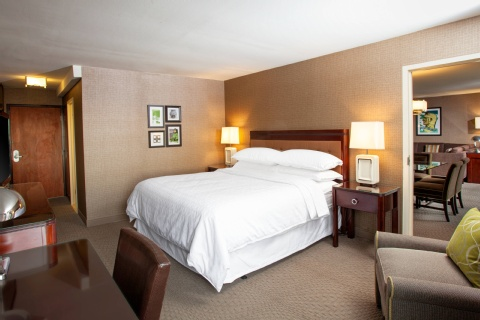 Sheraton Pittsburgh Airport Hotel, PA 15108 near Pittsburgh International Airport View Point 3
