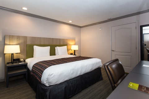 Country Inn & Suites by Radisson, Metairie, LA 70002 near Louis Armstrong New Orleans International Airport  View Point 21