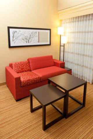 Courtyard by Marriott Buffalo Airport, NY 14225 near Buffalo Niagara International Airport View Point 11