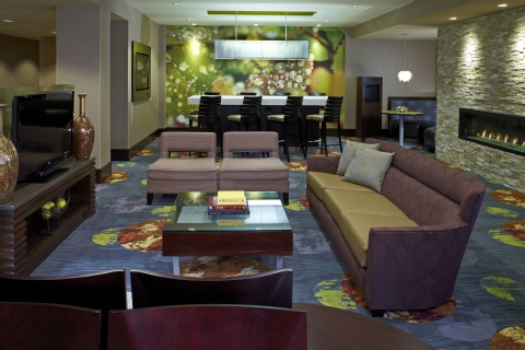 Courtyard by Marriott Buffalo Amherst, NY 14221 near Buffalo Niagara International Airport View Point 15