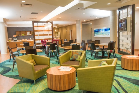 SpringHill Suites by Marriott Buffalo Airport, NY 14221 near Buffalo Niagara International Airport View Point 15