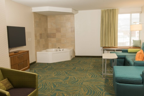 SpringHill Suites by Marriott Buffalo Airport, NY 14221 near Buffalo Niagara International Airport View Point 4