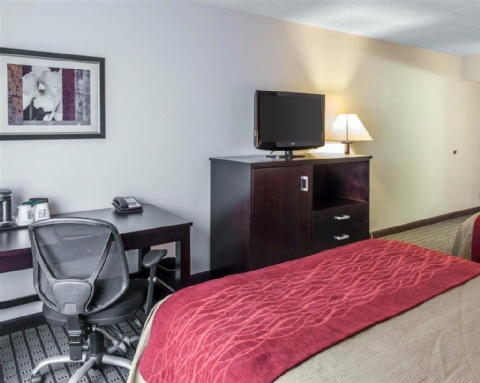 Comfort Inn & Suites BWI Airport, MD 21225 near Baltimore-washington International Thurgood Marshall Airport View Point 13
