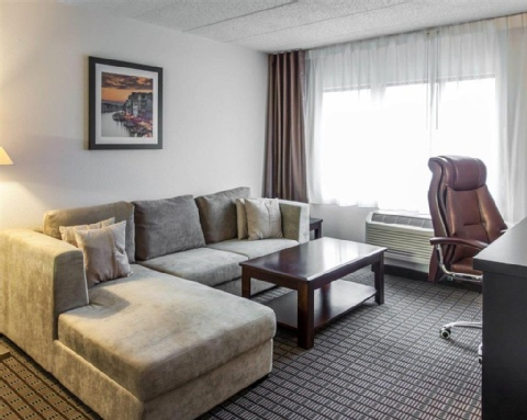 Comfort Inn & Suites BWI Airport, MD 21225 near Baltimore-washington International Thurgood Marshall Airport View Point 9