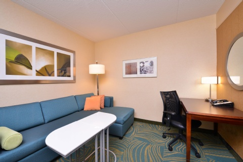 SpringHill Suites by Marriott Arundel Mills BWI Airport, MD 21076 near Baltimore-washington International Thurgood Marshall Airport View Point 5