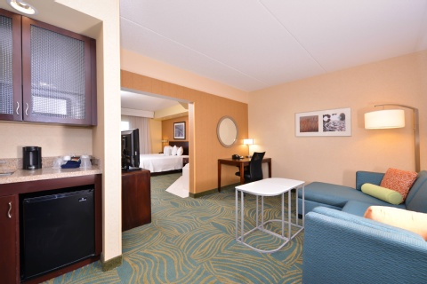 SpringHill Suites by Marriott Arundel Mills BWI Airport, MD 21076 near Baltimore-washington International Thurgood Marshall Airport View Point 4