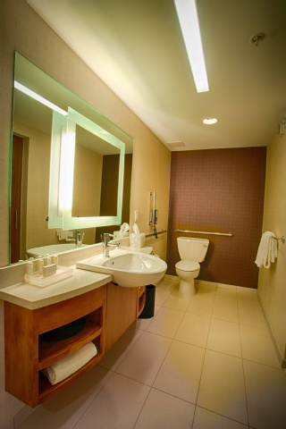 SpringHill Suites by Marriott Canton, OH 44720 near Akron-canton Regional Airport View Point 3