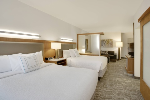 SpringHill Suites by Marriott Hartford Airport/Windsor Locks, CT 06096 near Bradley International Airport View Point 6
