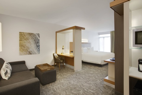 SpringHill Suites by Marriott Hartford Airport/Windsor Locks, CT 06096 near Bradley International Airport View Point 5