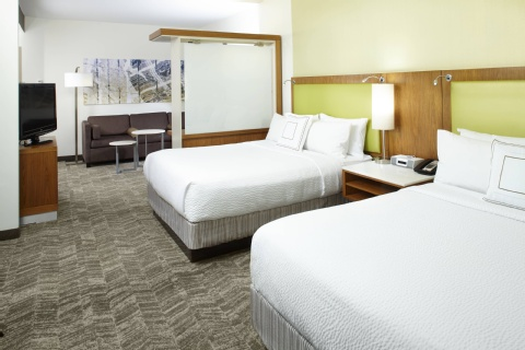 SpringHill Suites by Marriott Houston Intercontinental Airport, TX 77032 near George Bush Intercontinental Airport View Point 8