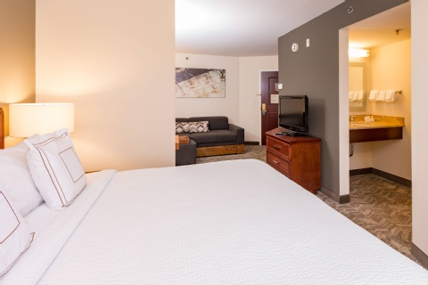 SpringHill Suites by Marriott Tampa Westshore Airport, FL 33607 near Tampa International Airport View Point 2