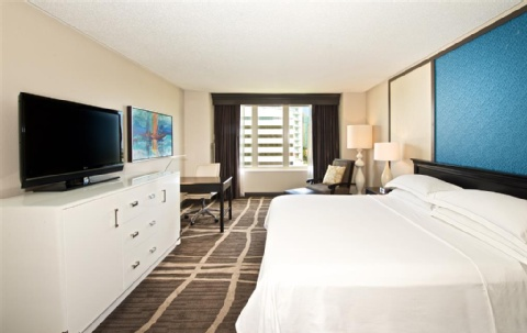 Hilton St. Petersburg Bayfront, FL 33701 near Tampa International Airport View Point 4