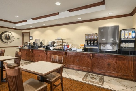 Comfort Suites At Fairgrounds-Casino, FL 33584 near  View Point 10