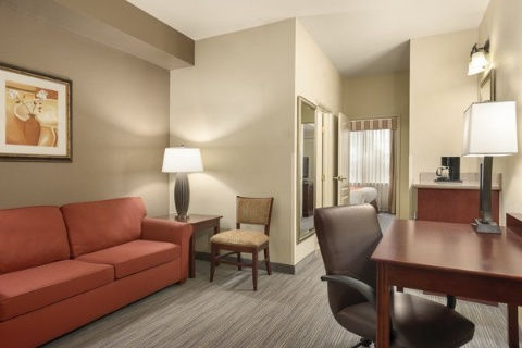 Comfort Suites At Fairgrounds-Casino, FL 33584 near  View Point 8