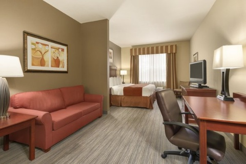 Comfort Suites At Fairgrounds-Casino, FL 33584 near  View Point 5